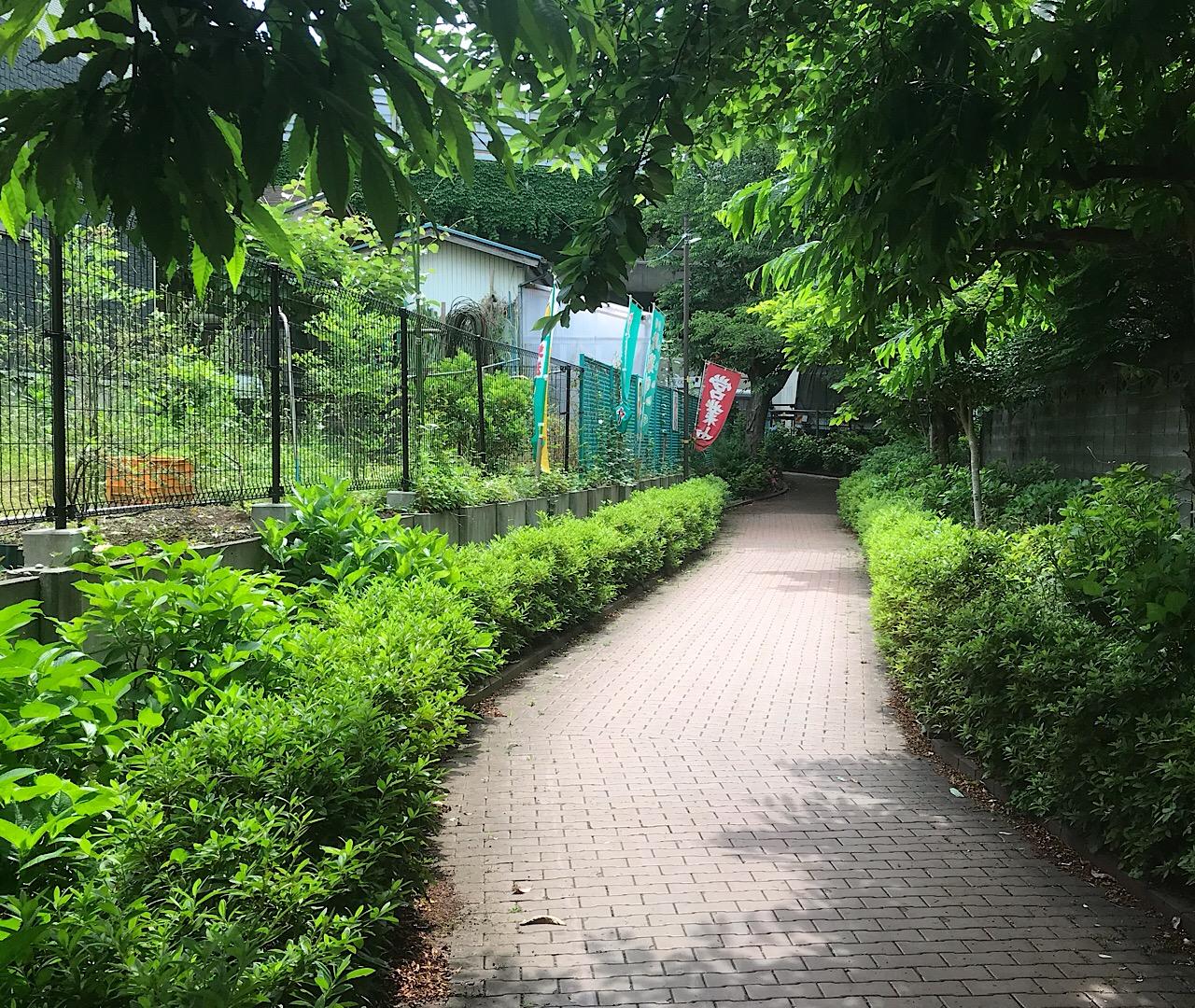 藤巻野菜直売所の入口