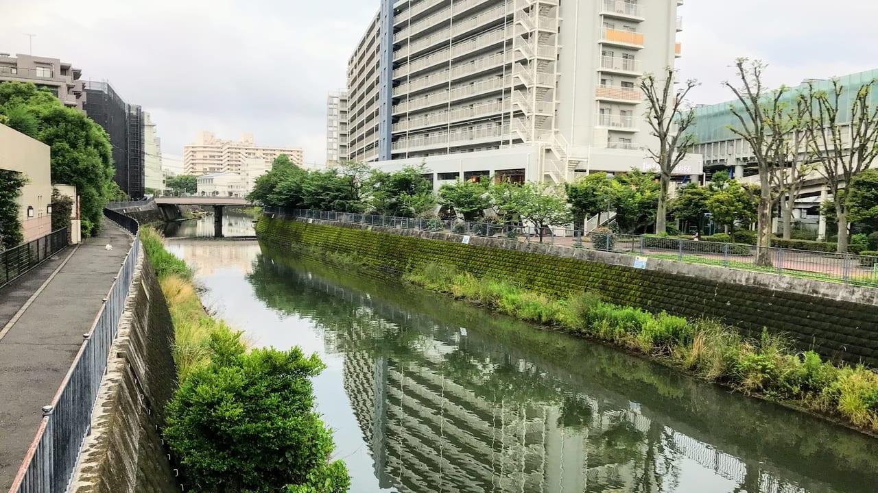 帷子川観察マップ